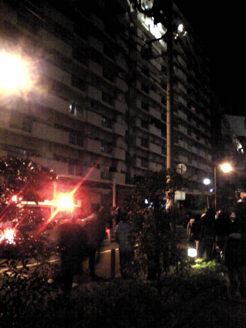 2010.1.15-3.JPG