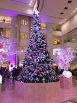 2012.11.15-2.JPG