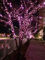 2012.12.12-1.JPG