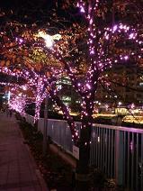2012.12.12-2.JPG