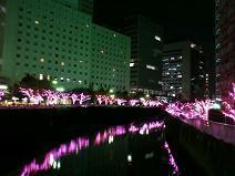 2012.12.12-3.JPG